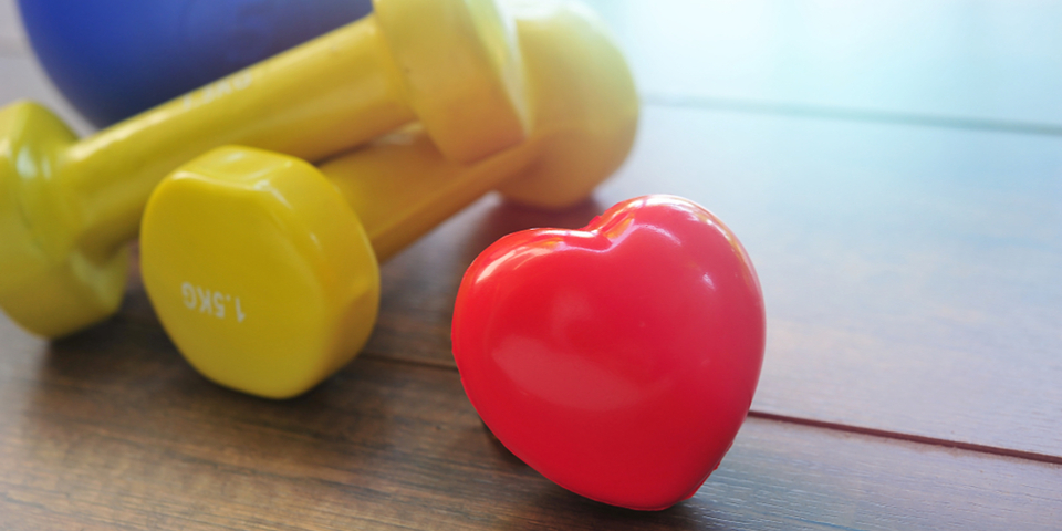 Steady Exercise and Heart Health